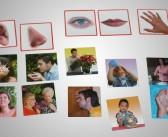 Fotografická, didaktická hra Zmysly, Akros